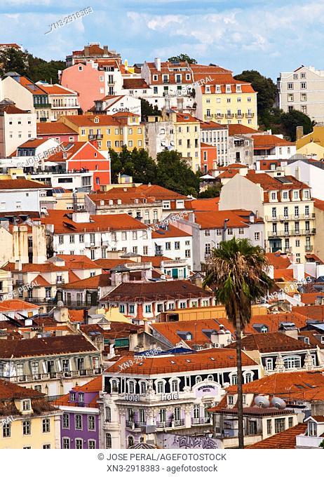 Baixa and Alfama view from the Mirador de Sao Pedro de Alcantara, Barrio Alto, Lisbon, Portugal, Europe