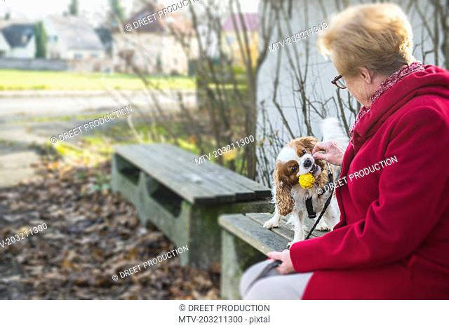 Old woman and her dog playing outside on bench