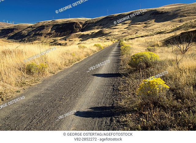 Railbed Trail, Deschutes River State Park, Columbia River Gorge National Scenic Area, Oregon