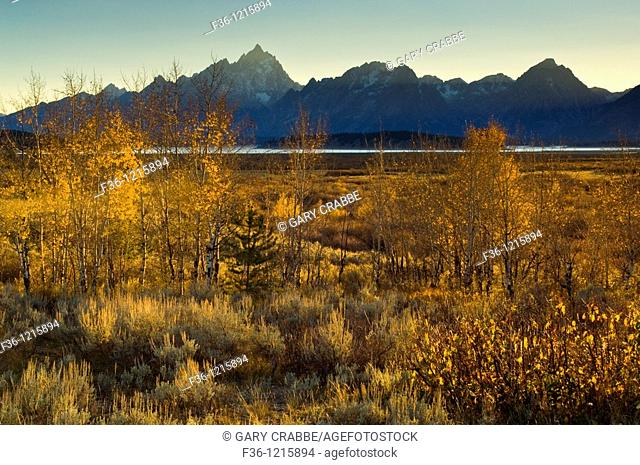 Sunset light over the Teton Range mountain and Willow Flats, near Jackson Lake, Grand Teton National Park, Wyoming