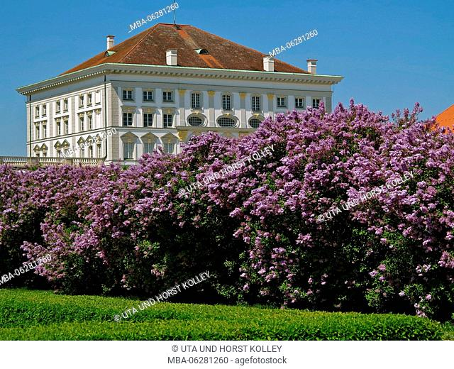 Nymphenburg Palace, Baroque, built in 1664-1703 by Agostino Barelli, Effner and Viscardi, large lilacs