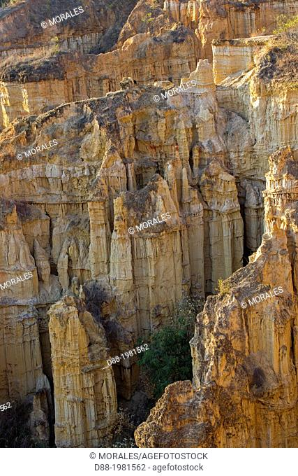China , Yunnan province , Yuanmou County, Yuanmou Clay Forest ,Soil forest , Wumao Earth Forest, Badlands in YuanMou of Yunnan, China