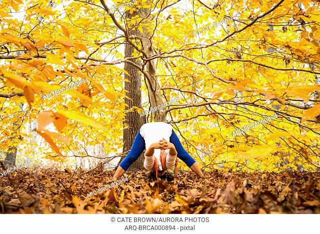 Woman Under The Autumn Tree Doing Yoga In New England