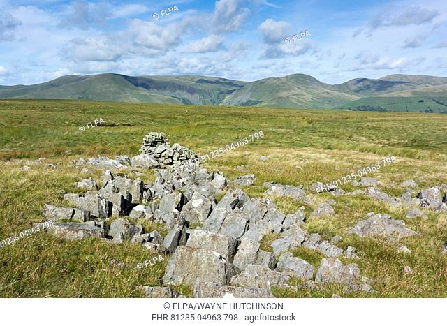 Ruins of old stone shepherd hut on moorland, Baugh Fell, Howgills, Yorkshire Dales N.P., Cumbria, England, August