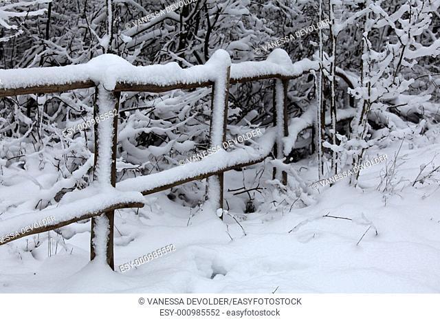 snow landscape in Het Zwin, Knokke, Belgium  V10BEL1432