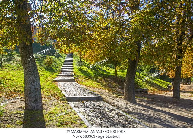 Park in Autumn. Segovia, Spain