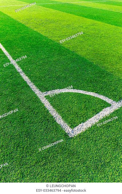 Soccer field grass with white line