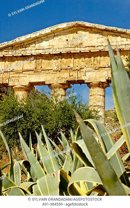 Temple of Segesta built 5th century AD in classical doric style probably by the greek. Sicily. Italy