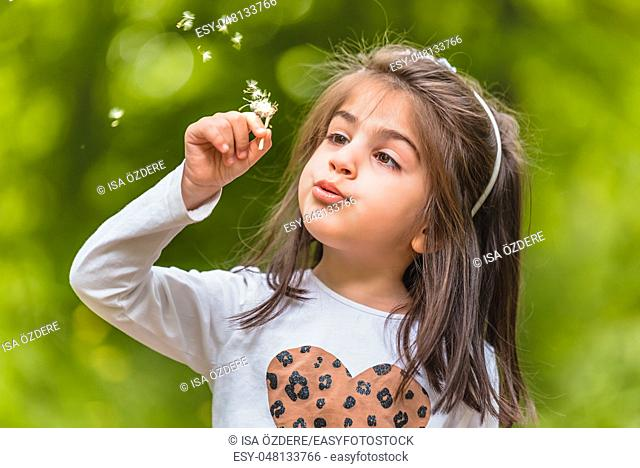 Outdoor portrait of adorable four years old cute little girl blowing a dandelion wild flower at meadow in a sunny day