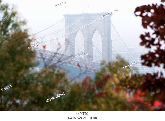 Detail of Brooklyn Bridge in mist, New York City, USA