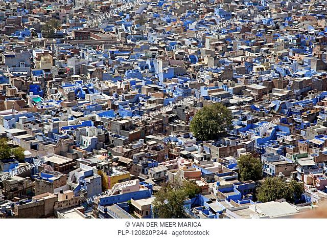 View over the blue city of Jodhpur, Rajasthan, India