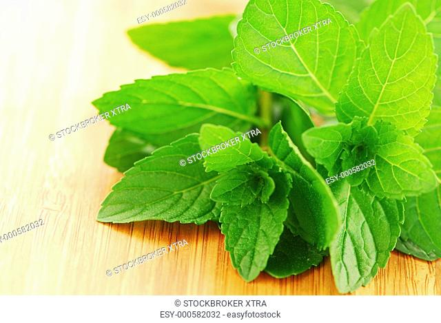 Sprigs of fresh green mint on a cutting board, close up