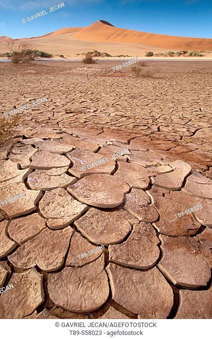Namibia, World Heritage Site, Namib-Naukluft National Park, Sosussvlei, World's tallest sand dunes, beautiful scenics