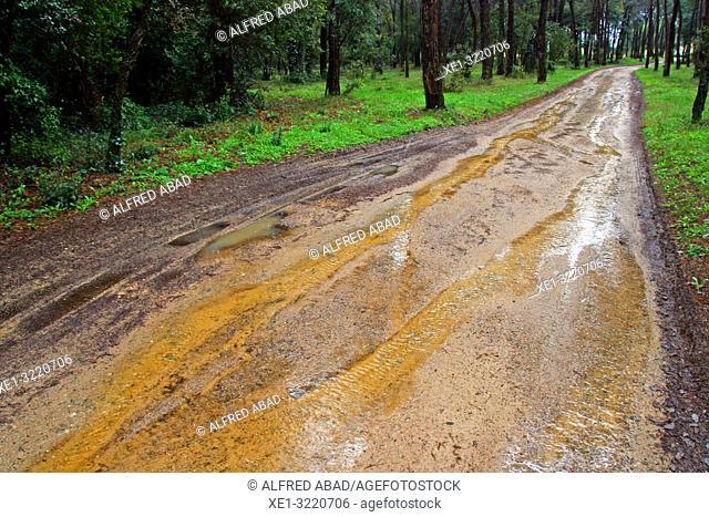 waterlogged rural road, Girona, Catalonia, Spain
