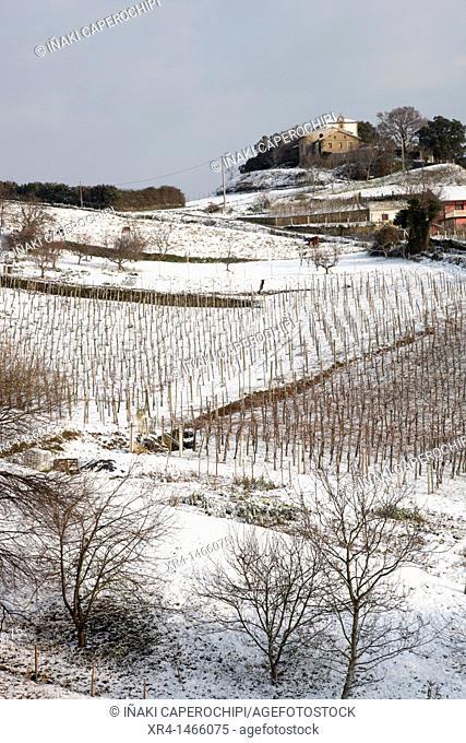Snow in Zarautz, Zarautz, Zarautz, Guipuzcoa, Gipuzkoa, Euskadi, Basque Country, Spain