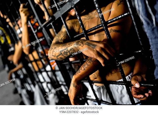The Mara Salvatrucha gang members are seen behind the bars of cells in a detention center in San Salvador, El Salvador, 20 February 2014