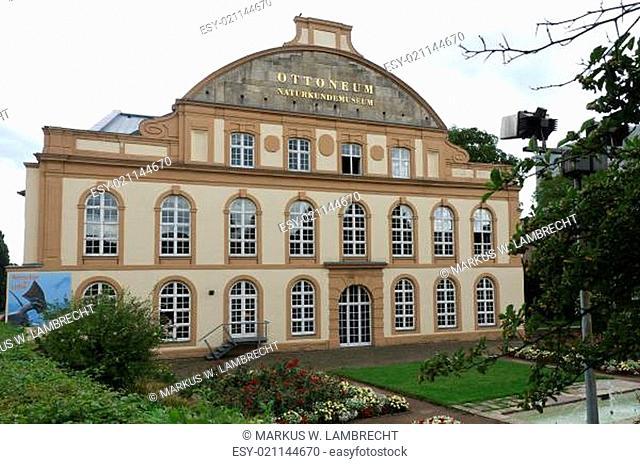 Kassel Naturkundemuseum Ottoneum