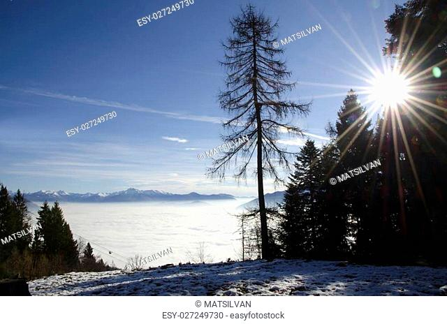 Sea of fog over an alpine lake with snow-capped mountain and sunbeam and trees