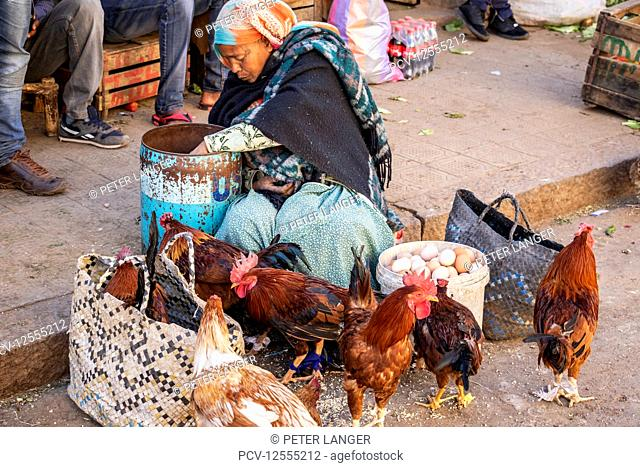 Eritrean woman selling chickens at the Mercato of the indigenous people; Asmara, Central Region, Eritrea