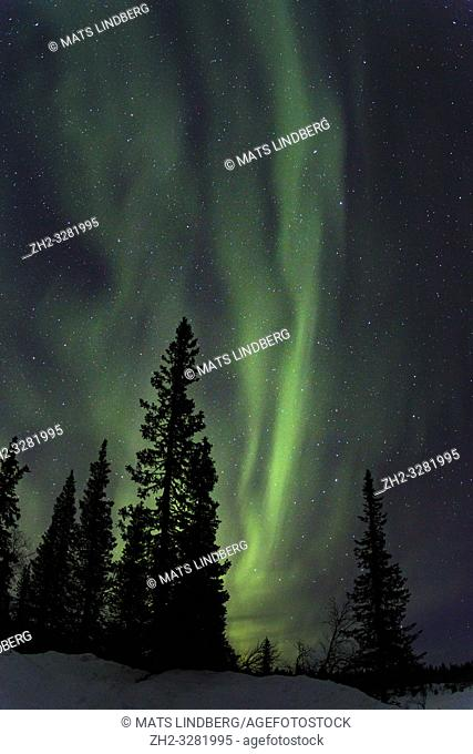 Northern light, Aurora borealis, colorful sky, Gällivare county, Swedish Lapland, Sweden