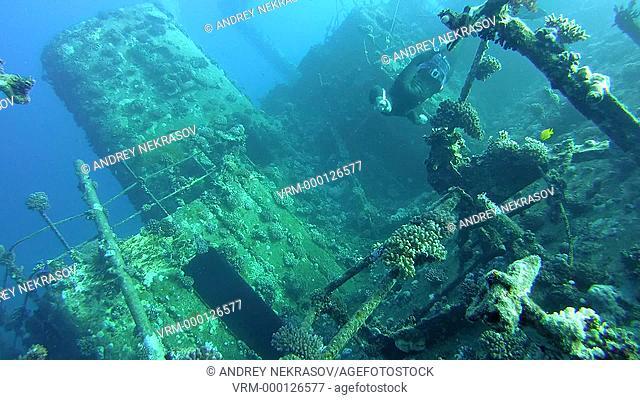 Freediver dives on the wreck Giannis D, Red Sea, Sharm el Sheikh, Egypt, Sinai