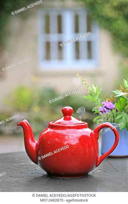 Irish tea, The Burren, Co Clare, Ireland