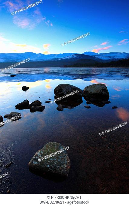 Loch Morlich in the morning, United Kingdom, Scotland, Cairngorms National Park