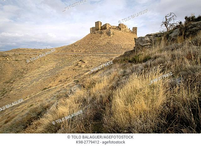 Castle of Montearagon, XI century, municipality of Quicena , Huesca province, declared National Monument in 1931, Pyrenean mountain range , Aragon , Spain