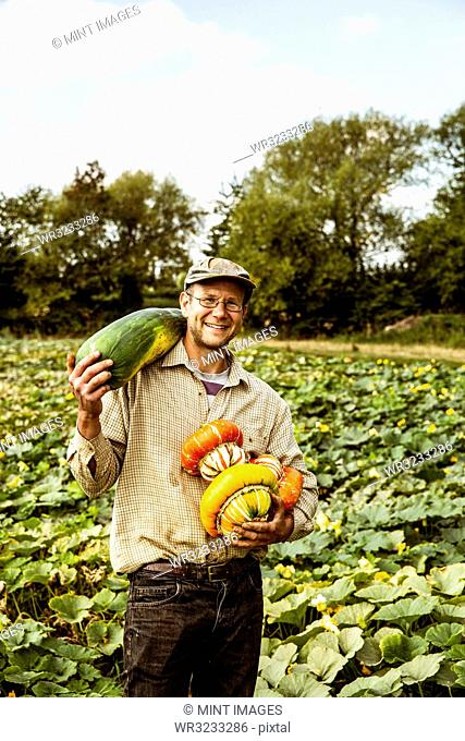 Smiling farmer standing in a field, holding selection of freshly harvested pumpkins