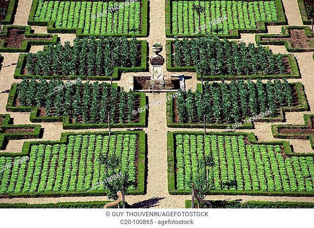 Château de Villandry gardens, detail. Indre-et-Loire, France