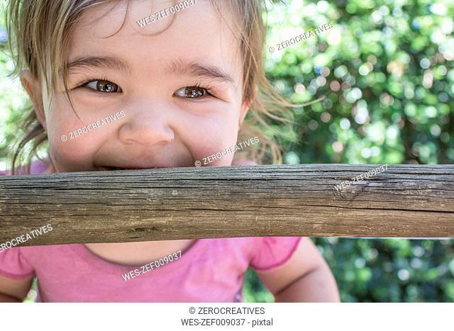 Cute little girl on rung of a ladder