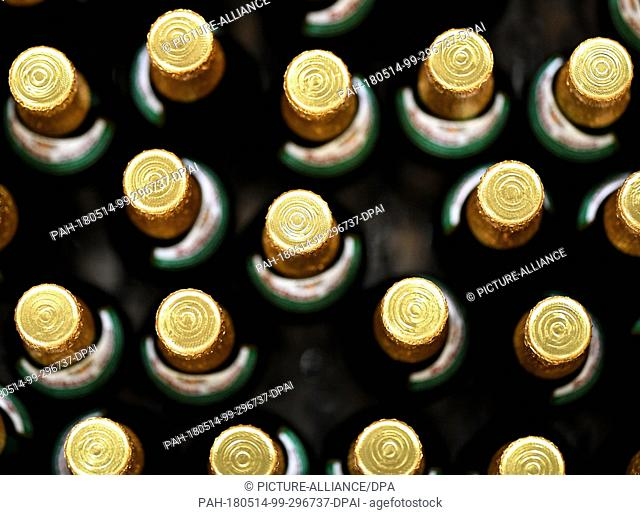 08 May 2018, Germany, Rothaus: Beer bottles of the brand 'Tannenzaepfle' (lit. fir cone) are on a conveyor belt at the filling line of Baden's state brewery...