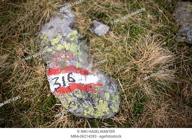 open aperture photo of a labeled stone im Zillertal