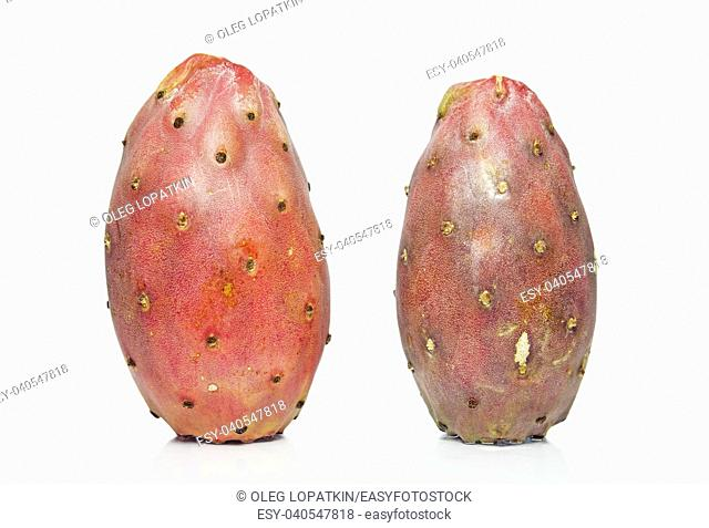 cactus fruit on a white background