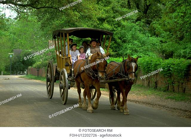 horsedrawn, driven, carriage, family