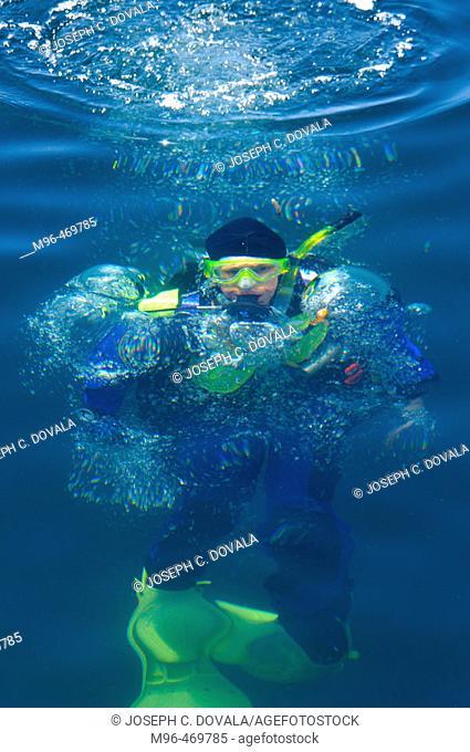 Female scuba diver on ascent near surface