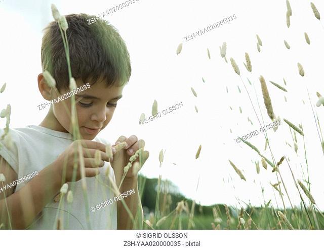 Boy looking at weeds