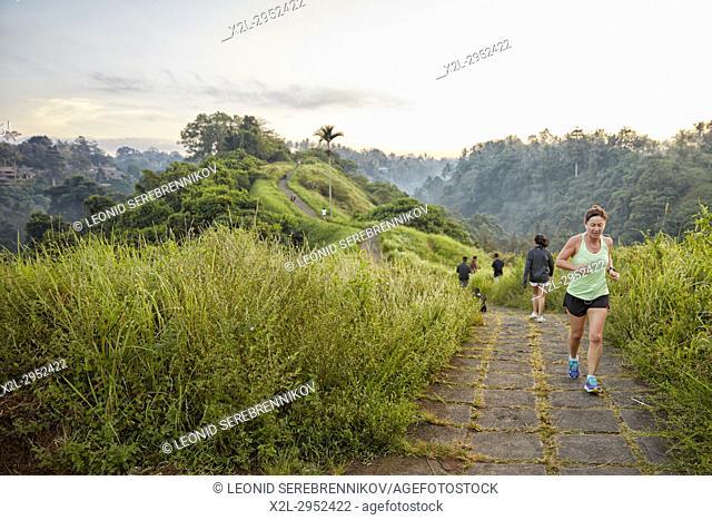 Campuhan Ridge Walk. Ubud, Bali, Indonesia