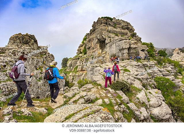 Torcal de Antequera, Erosion working on Jurassic limestones, Málaga province. Andalusia, Southern Spain Europe