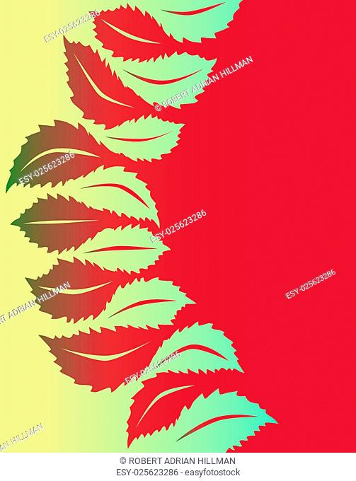 Illustrated vector design of generic leaf shapes