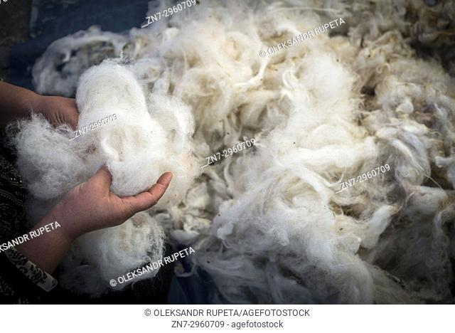 Daily life in the highest village of Azerbaijan. A woman is cleaning and scratching wool in her yard in Khinalig village, Quba region, Azerbaijan