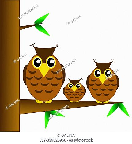 Owl sheet Stock Photos and Images | age fotostock