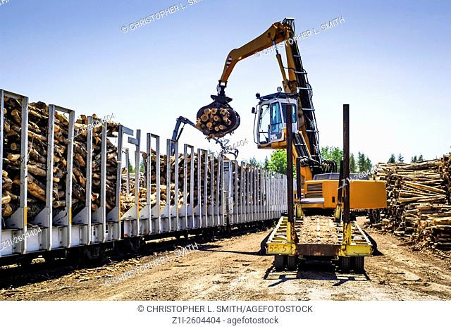 Moving logs into rail carriages at a logging distribution center in Wisconsin WI