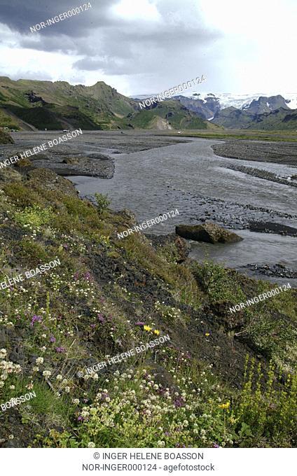 Looking over Krossa ( river ) in Thorsmork, Eyjafjallajokull in the back