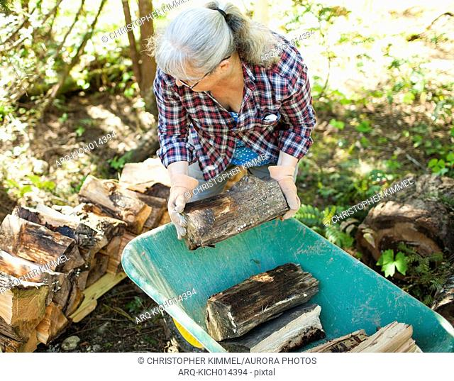 Mature woman with gray hair stacking firewood from wheelbarrow