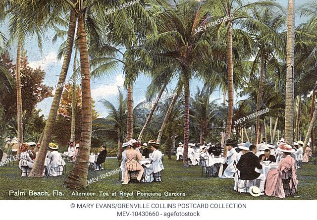 Palm Beach, Florida - Afternoon Tea at the Royal Poinciana Gardens
