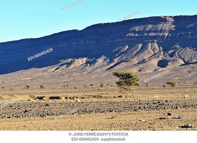 Jbel Bani mountains, Vallée du Drâa, Draa Valley, Zagora province, Sous-Massa-Drâa, Morocco, Africa, december 2009
