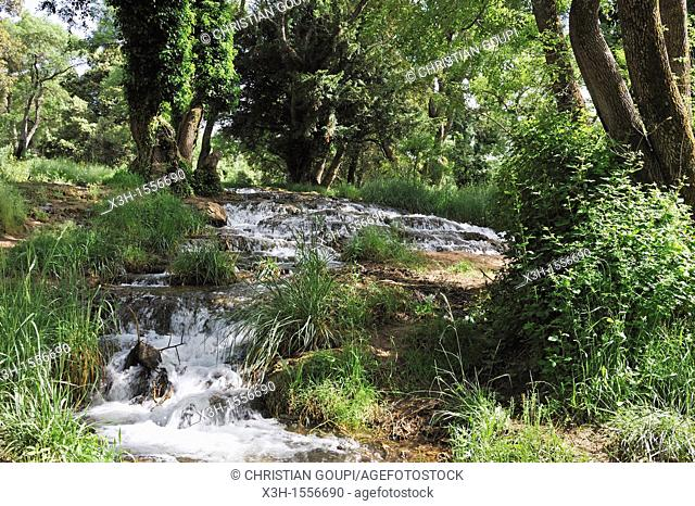 waterfall in the forest around Ifrane, Middle Atlas, Morocco, North Africa
