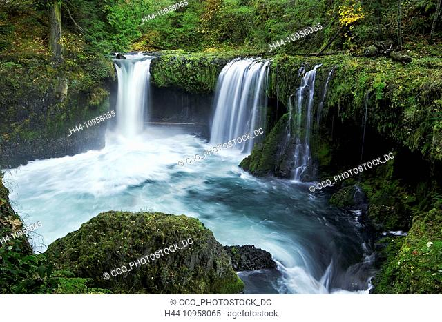 Spirit Falls in the Columbia River Gorge on the Washington side. Fall. USA