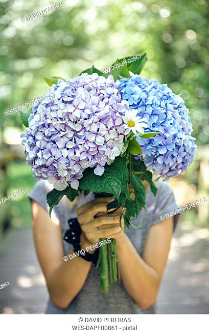 Unrecognizable young woman hiding behind a bouquet of hydrangeas